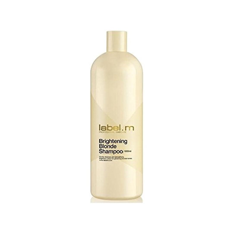 購入思慮深い以上.増白ブロンドシャンプー(千ミリリットル) x4 - Label.M Brightening Blonde Shampoo (1000ml) (Pack of 4) [並行輸入品]