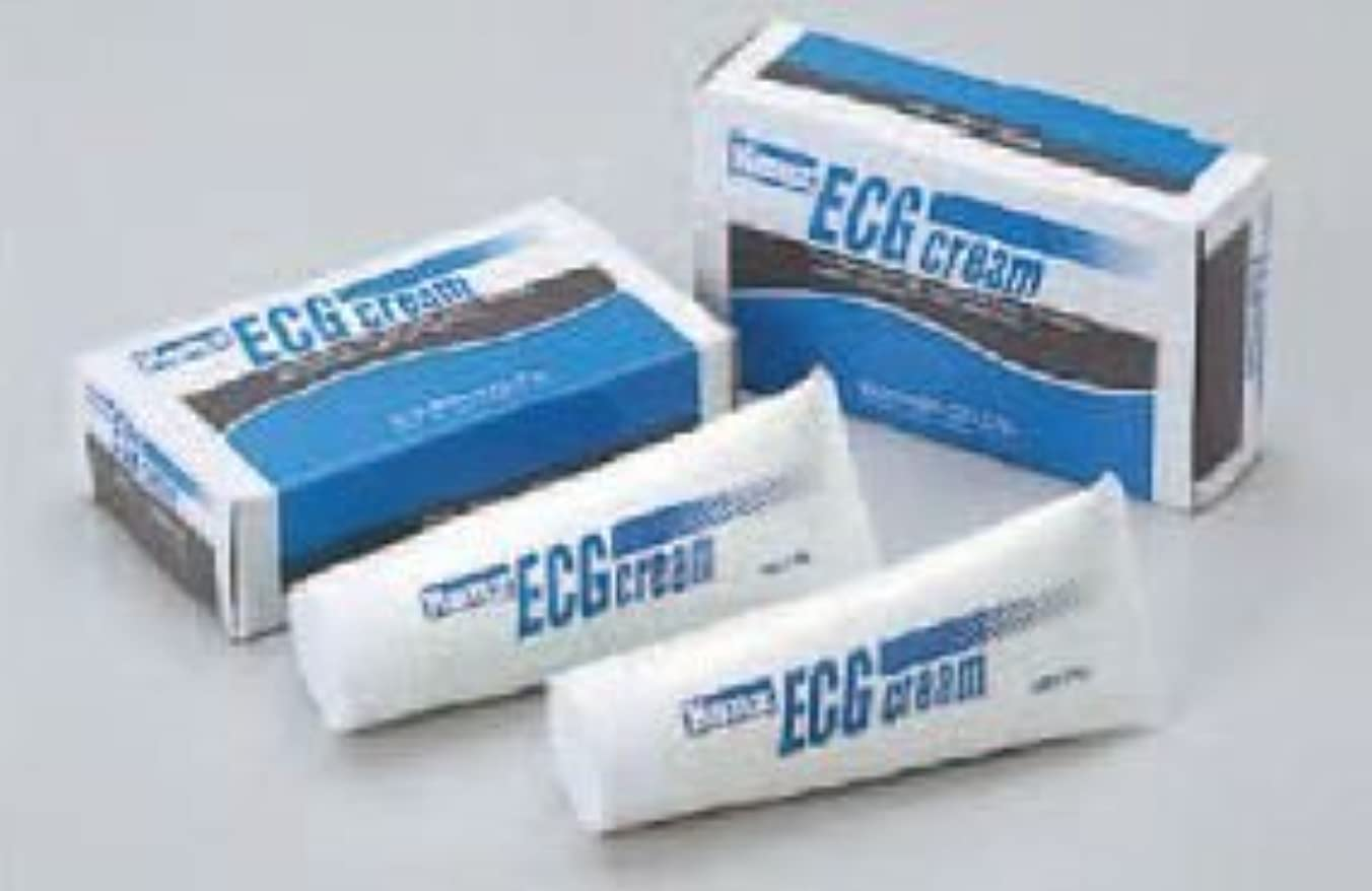 流行エスカレート正確にkenz ECGクリーム 70g×2本入×2個セット
