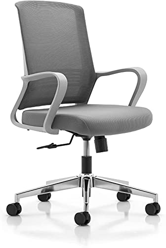 MISURAA Imported Shadow Ergonomic Chair for Office & Home - Grey