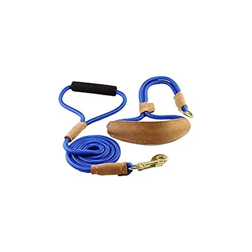 MXJMSD Correa para Perros, para p Collar de Collar de resbalón para Mascotas Caminar por Mascotas Perro montañismo Cuerda Espuma Cachorro tracción Mascota pequeños Perros Grandes Grandes,Azul,130cm