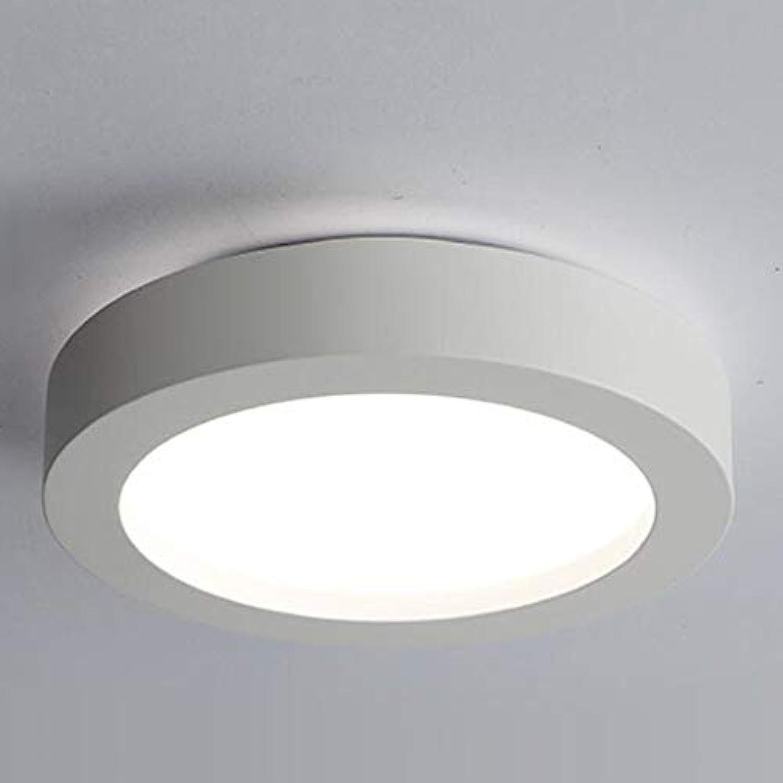 Deckenleuchten Schmiedeeisen Personalisierte Runde LED Beleuchtung Anwendbar Restaurant Schlafzimmer Hotel, Weiß