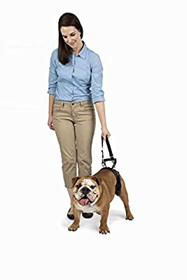 PetSafe CareLift Rear Support Harness - Lifting Aid with Handle and Shoulder Strap - Great for Pet Mobility and Older Dogs - Comfortable, Breathable Material - Easy to Adjust - Medium, Black by Radio Systems Corporation