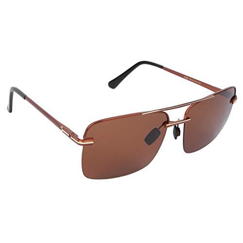 DAUERHAFT Polarisierte Sonnenbrille Modische Schutzbrille Nachtsichtbrille zum Schutz der Haut des menschlichen Körpers(Tea golden Frame Tea Slices)