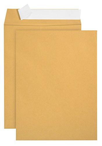100 9 X 12 Self Seal Golden Brown Kraft Catalog Envelopes - Designed for Secure Mailing - Oversize Strong Peel and Seal Flap with 28 Pound Kraft Paper- 100 Envelopes