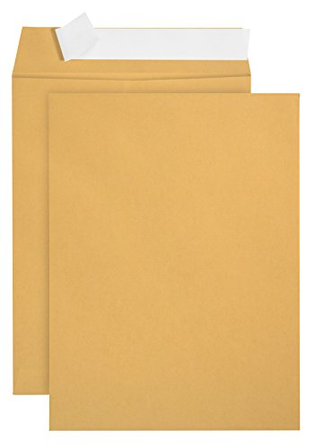 100 6 x 9 Self Seal Golden Brown Kraft Catalog Envelopes - Oversize 6...