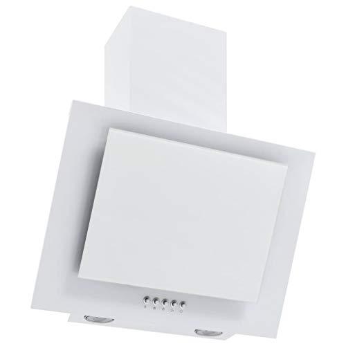 Dunstabzugshaube 60 cm Edelstahl und Hartglas Weiß