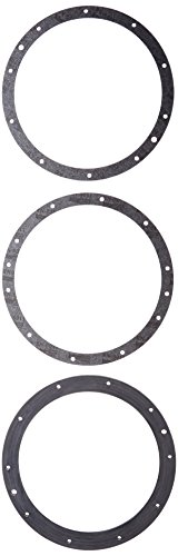 Best Price Pentair 79200700 10-Hole Standard Gasket Set with Double Wall Replacement Large Stainless...