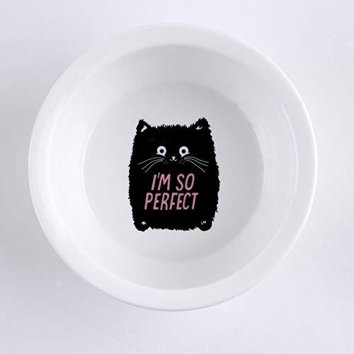 MYYXGS Keramik-HaustierschüSsel Mit WasserschüSsel FüR Hunde Und Katzen Und Futtertablett Einzel- Und Doppel-Futternapf