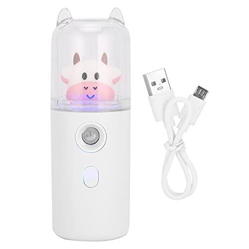 30 ml Facial Mist Sprayer, USB Oplaadbare Gezicht Hydraterende Spray Handheld Hydrating Sprayer voor Huidverzorging
