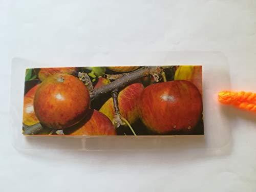 Lesezeichen selbstgemacht, Äpfel, Buchzeichen Bookmark Bücher Buch, Apfel Obst Früchte