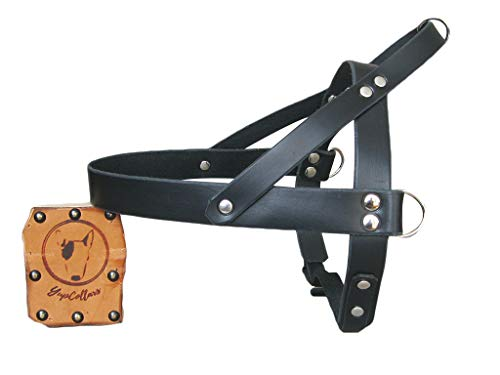 Black Leather Dog Harness, Ideal for All Breeds, Adjustable Dog Harness, YupCollars, Made in Italy