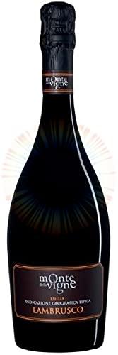Lambrusco Secco IGT - Monte delle Vigne