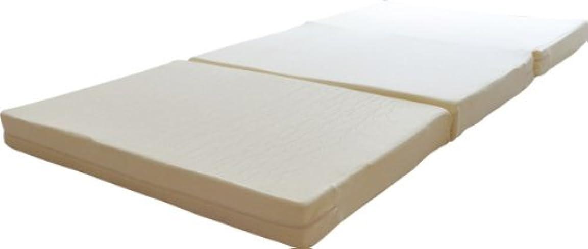 コンテスト説得力のあるチロエムール 10cm厚 三つ折り 高反発 マットレス 敷き布団 ダブル