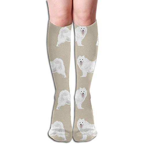 Nifdhkw NEW French Bulldog Sweet Dog Puppy Puppies Dog Unisex Compression Socks For Womens Mens Classics Knee High Socks Sport Long Sock One Size