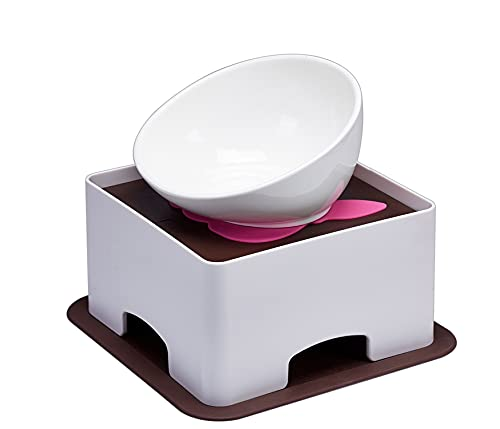 YMAXGO CeramicsTilted Single Food Feeding Bowl for French Bulldogs/Cats, Non-Slip Design