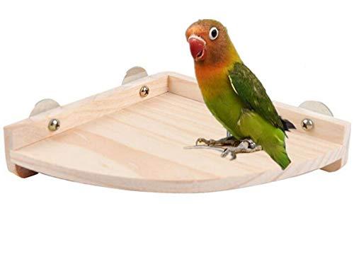 fpigeons Pájaros mascota loro rata pequeños animales perca plataforma soporte madera jaula accesorios proveedor S