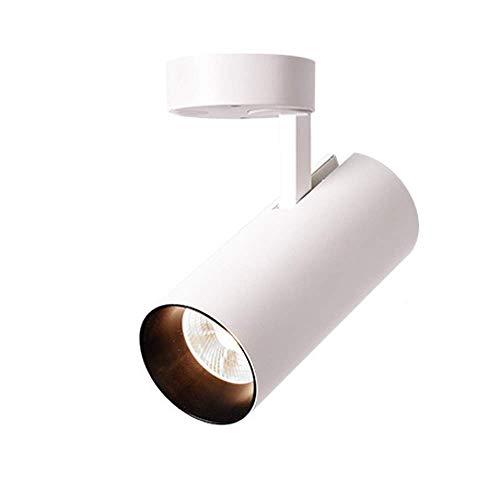 LLLKKK Foco de montaje en superficie, color blanco, luz artística, para cuadros COB, LED, iluminación de techo, para pasillo, salón, vestíbulo, (color: 4000 K)