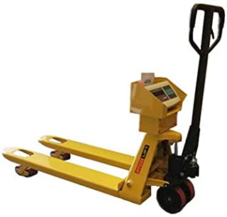 Pallet Weighing Scale: 3000kg x 500gm