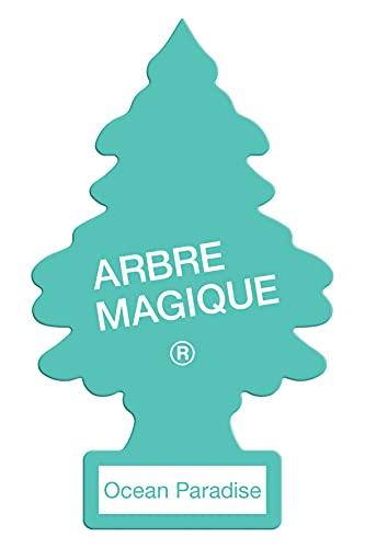 Little Trees MTR0067 Arbre Magique Parfum Océan Paradise