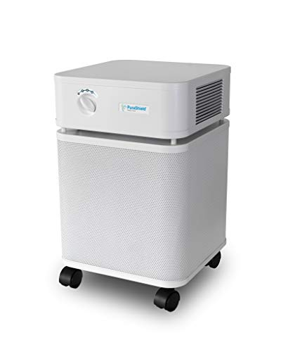 Purashield 500 Antimicrobial Air Scrubber, Clean Air for Your Office, Air Purification System