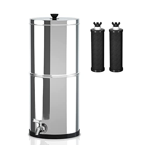 Ginkin Gravity-fed Water Filter System,with 2 Purification...