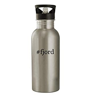 #fjord - 20oz Stainless Steel Water Bottle Silver