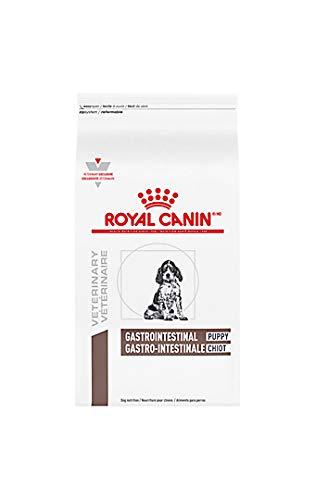 Royal Canin Canine Gastrointestinal Puppy Dry Dog Food 22 lb