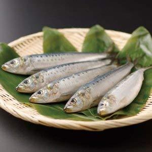 大トロいわし (北海道産) 1尾 (150-170g)