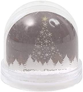photo snow globe christmas card
