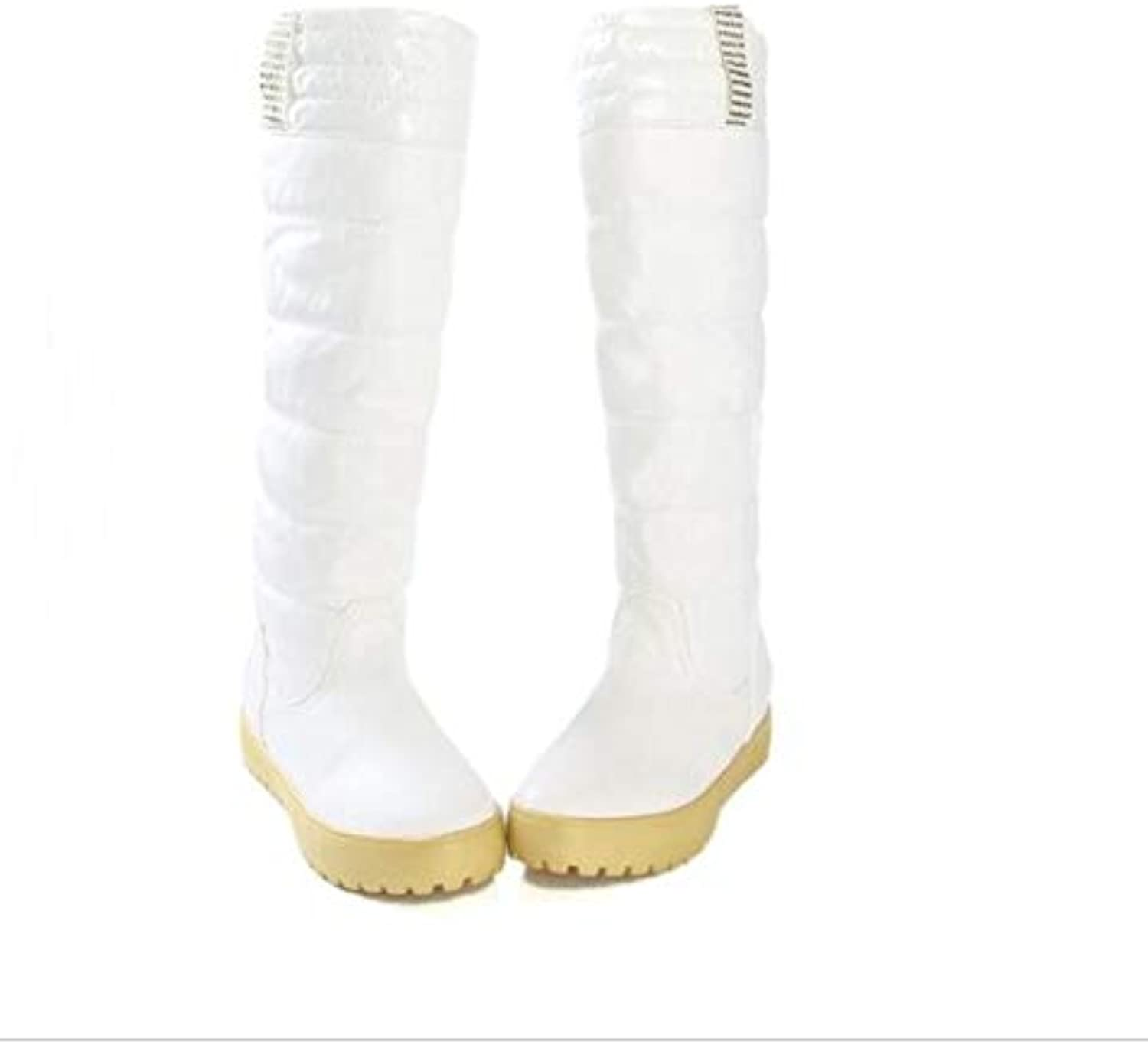 Top Shishang Autumn Winter Warm Lined Waterproof high Boots Thick Snow Boots Women