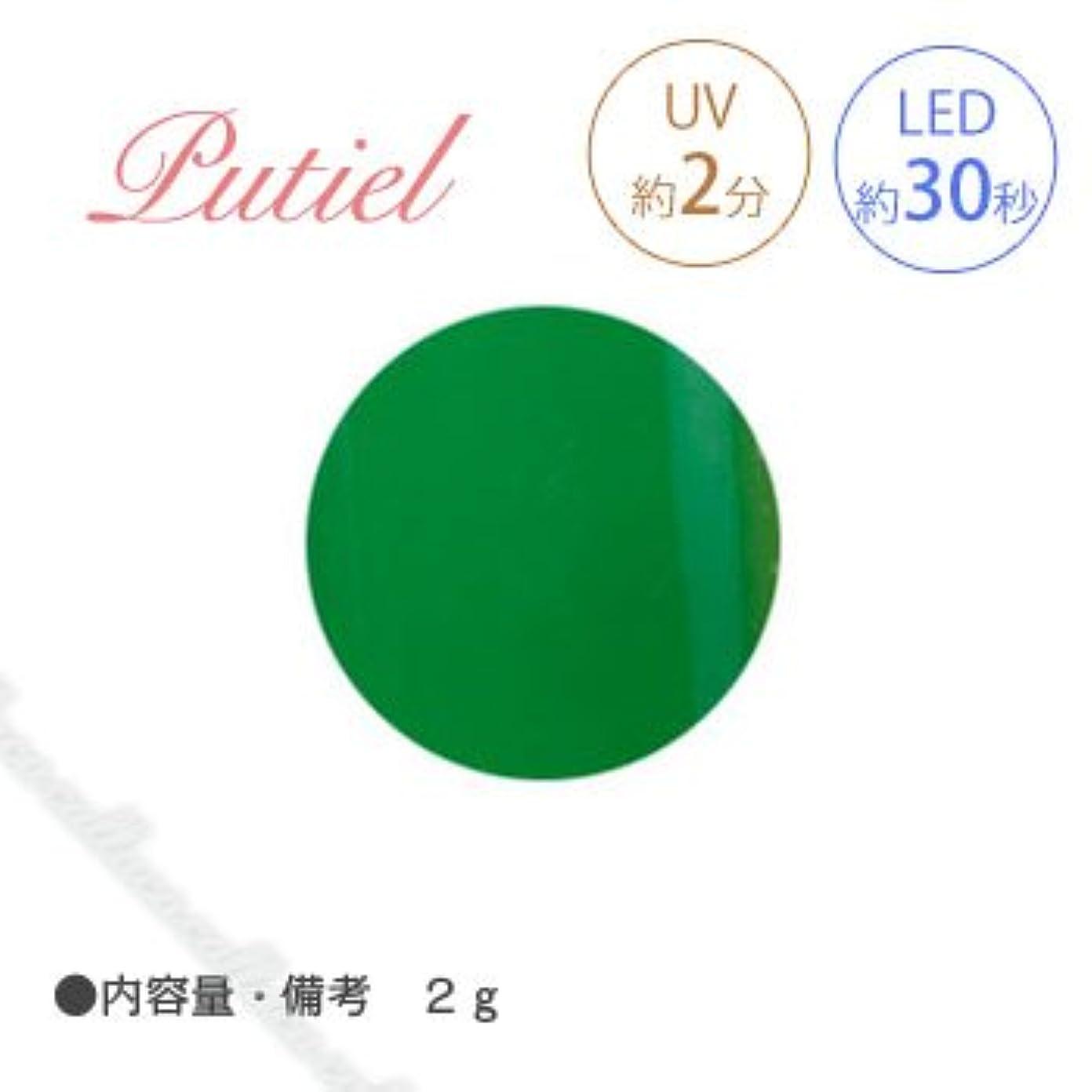 有能な統計笑Putiel プティール カラージェル 108 ビタミングリーン 2g