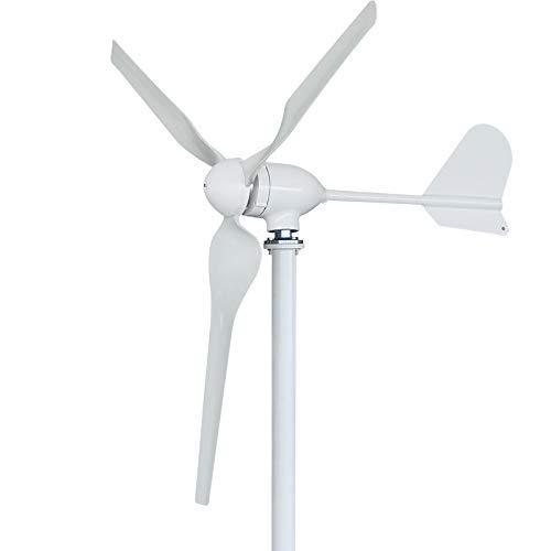 FLTXNY POWER Turbina Eólica 1000W 24V Aerogenerador Horizontal Pequeño Generador de Turbina...