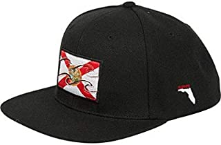 Billabong Men's Native Snapback Hat