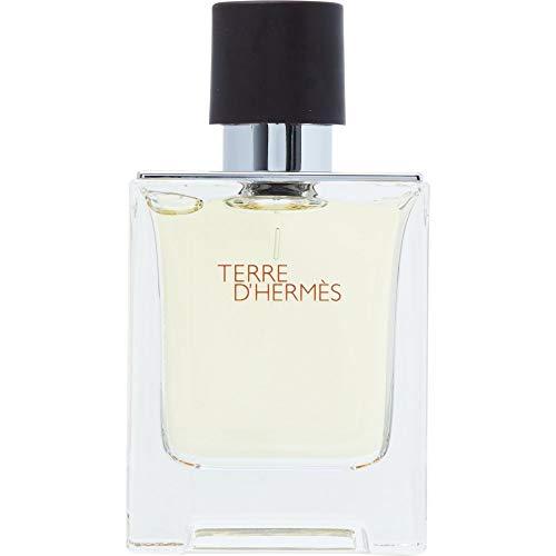 Hermès Terre D'Pour Homme Eau de Toilette Vapo 50 ml