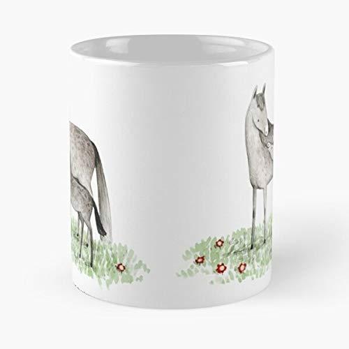 Potro caballo domingo poni madres marea madre día madre mejor taza de café de cerámica personalizada
