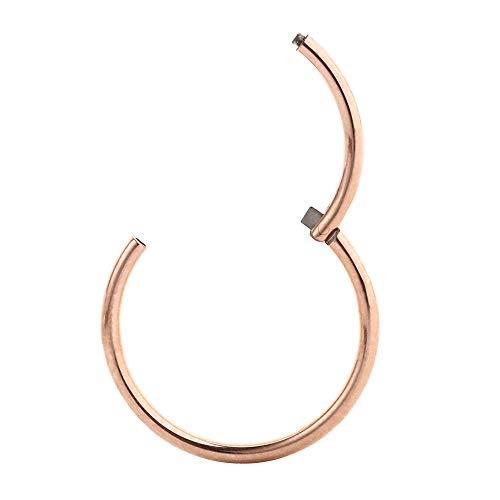 16g Cartilage Earring Nose Rings 16 Gauge Cartilage Earrings Surgical Steel Helix Earring Conch Piercing Jewelry Ear Lobe Earrings 16mm Hoop Earrings Rose Gold Nose Hoop