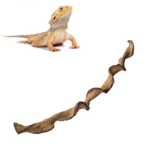 Reptile Climbing Cane Chameleon Tree Frog Reptile Landscaping Supplies Create A Natural Habitat And Add A Sense of Security To Pets,C