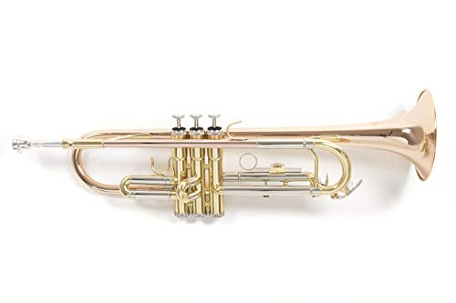 Roy Benson Rb701075 Tromba in Sib Tr-202G, Finitura Laccata, Astuccio Rettangolare
