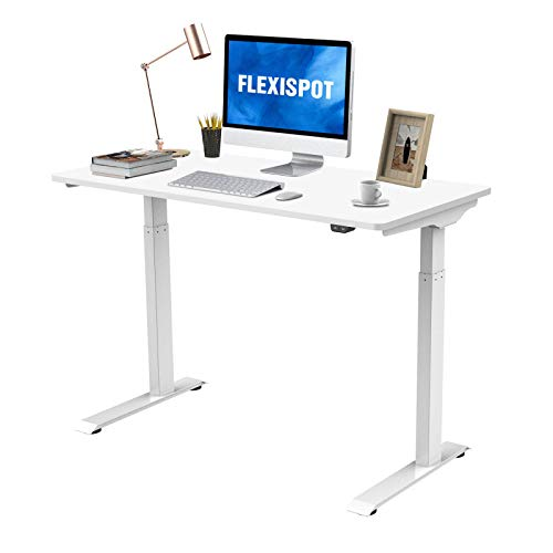 Flexispot Standing Desk Electric Quick Install Height Adjustable Desk 48 x 24 Inches Whole-Piece...