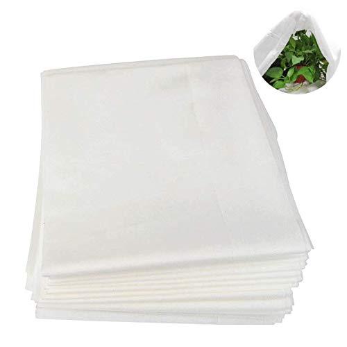 HOPATE Gartenvlies für Pflanzen, Frostschutztuch, Winterpflanze, Frostschutz, Vliesstoff, weiß, für Pflanzen, Gemüse, Schatten, Decke, Anti-Vögel, Insekten, 2,5 x 7,5 m