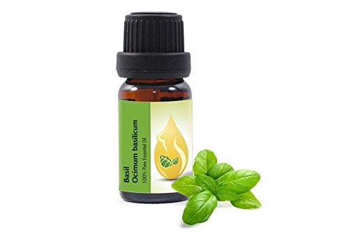 Basilikum (Ocimum basilicum) 100% naturreines, ätherisches Öl (10ml) Basilikumöl, Spitzenqualität aus dem eigenen Familienbetrieb, therapeutische Qualität
