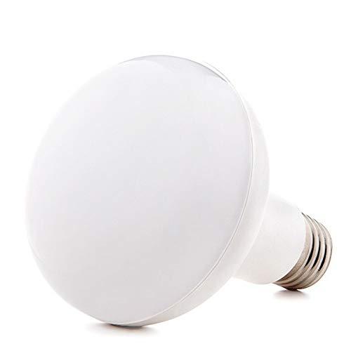 Greenice | Bombilla de LEDs R90 E27 15W 1200Lm 30.000H | Blanco Cálido