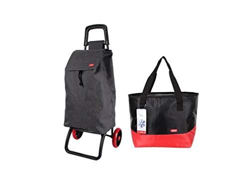 Caddie ASSIKA - Carrito de la compra plegable con 2 ruedas, 50 litros, bolsa impermeable lavable, color gris y Milonga, bolsa isotérmica lavable, tamaño: 33 x 19 x 45 cm