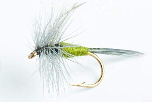 Blue-Winged Olive Dry Fly, 6-Pack (#16)