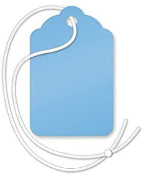 SmartSign Blank Blue Merchandise Tags Price Tags with String   1.125  x 1.75  Pack of 1000