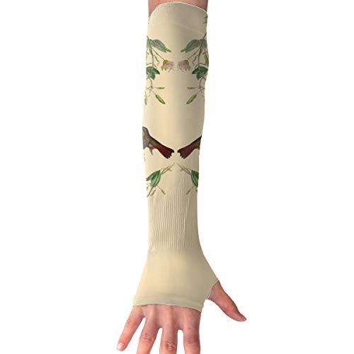 Kolibri Vogel Langarm Handschuh Sonnenschutz Arm Sleeve mit Daumenlöchern