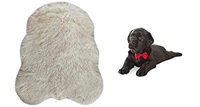 iHappyDog Luxury Faux Fur Orthopedic Dog Bed, Memory Foam Dog Bed? for? Small, Medium, Large and XL Pets, Fluffy Pup Rug with Waterproof ?and ?Washable Soft Cover, Bone White (Small)