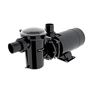 """The Raypak AGP pump is a durable and reliable above-ground pool pump that plugs into any grounded outlet. Features an over-sized pump basket measuring 89 cu. in. 1.5"""" or 2"""" PVC union connections 1.5"""" or 2"""" PVC union connections Quick-release pump cov..."""