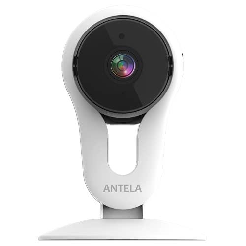 ANTELA K219