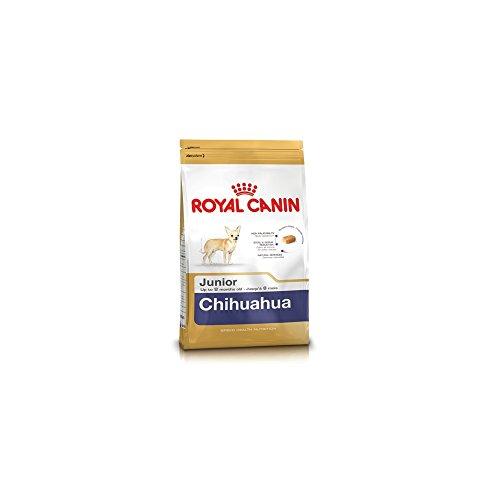 ROYAL CANIN Cibo Secco per Cane Chihuahua Junior - 500 gr